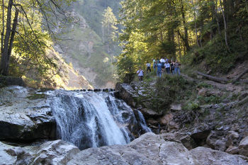 Gorge-Waterfall-web350 233